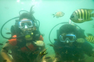 Malvan scuba diving