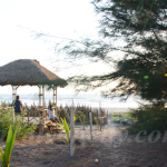Suruchi Beach Resort -Outdoor view
