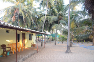 Seashore Home Stay - devbagh