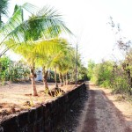 Property in Malvan to sale