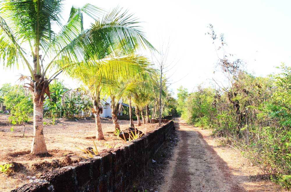 Property in Malvan to sale | property in sindhudurg |land